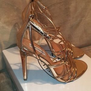 845468bf8bd Steve Madden Shoes - Steve Madden Smith Strappy Sandal Rose Gold Sz 9